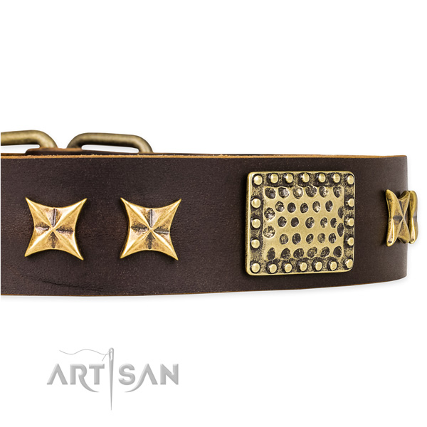 Easy to use leather dog collar with resistant to tear and wear brass plated hardware