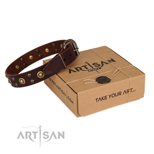Trendy full grain leather dog collar for everyday use