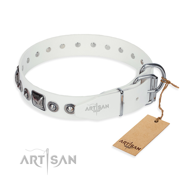 Functional leather collar for your favourite pet