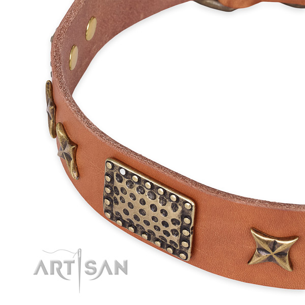 Easy to put on/off leather dog collar with resistant durable hardware