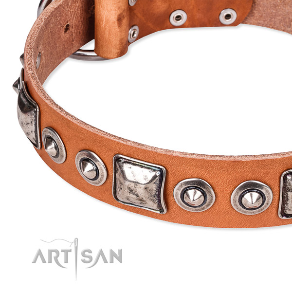 Quick to fasten leather dog collar with resistant to tear and wear non-rusting buckle