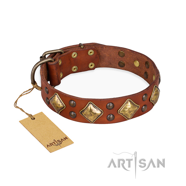 Remarkable design adornments on genuine leather dog collar