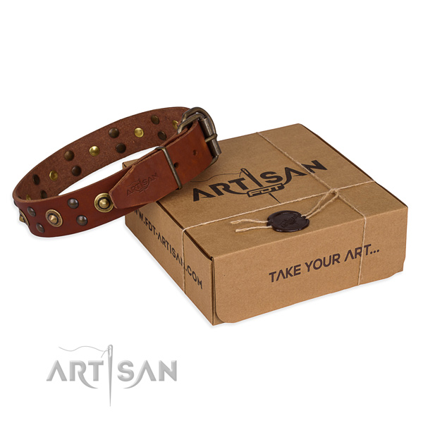 Designer natural genuine leather dog collar for stylish walks