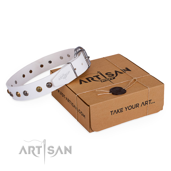 Awesome full grain leather dog collar for walking in style