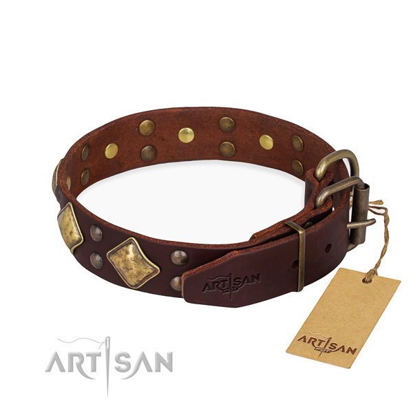 Daily leather collar for your elegant dog