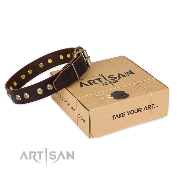 High quality leather dog collar for everyday use