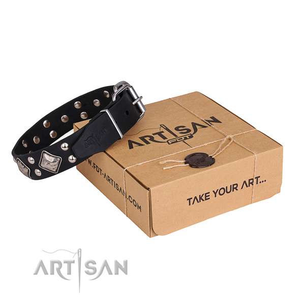 Fine quality full grain genuine leather dog collar for walking in style