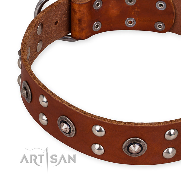 Easy to adjust leather dog collar with extra strong non-rusting set of hardware