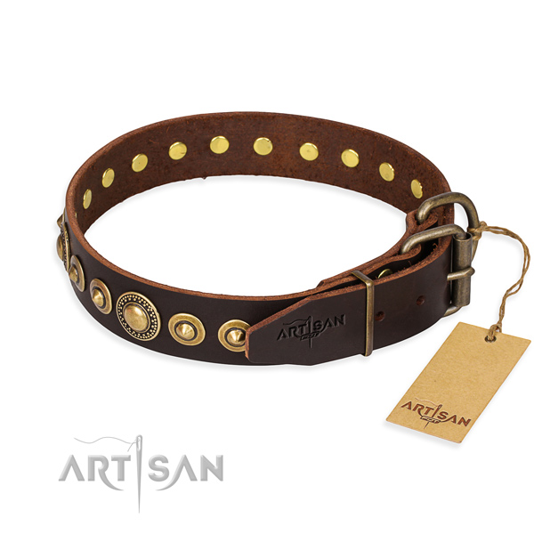Daily leather collar for your noble four-legged friend
