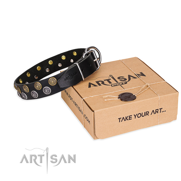 Casual leather dog collar with remarkable embellishments