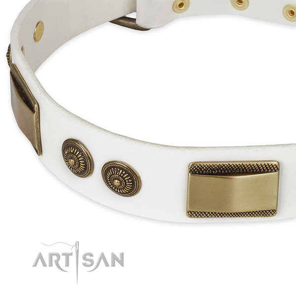 Everyday walking full grain leather collar with corrosion resistant buckle and D-ring