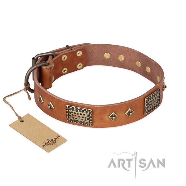 Stunning design decorations on full grain genuine leather dog collar