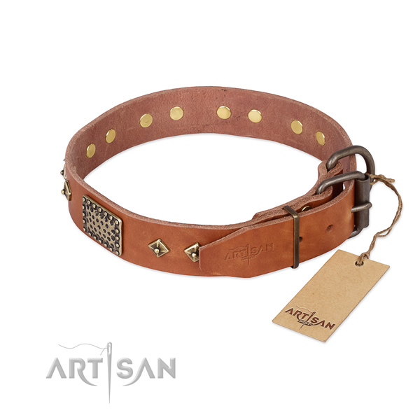 Daily walking full grain natural leather collar with decorations for your canine