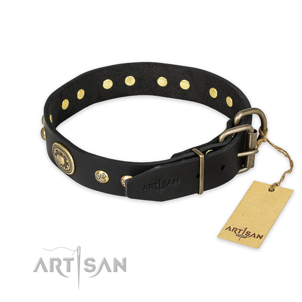Everyday walking genuine leather collar with embellishments for your doggie