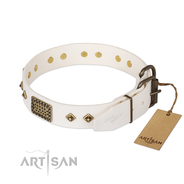 Stylish walking genuine leather collar with studs for your dog
