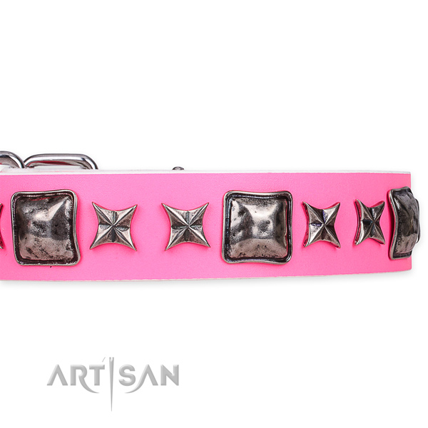 Snugly fitted leather dog collar with resistant chrome plated fittings