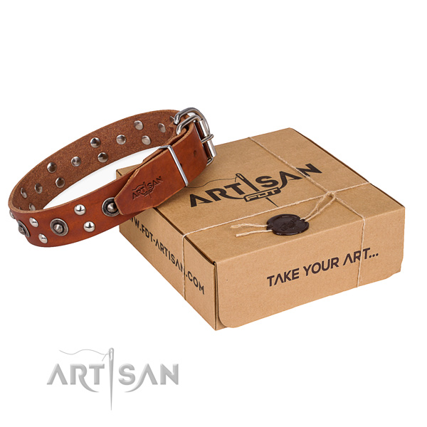 Perfect fit leather dog collar for everyday walking