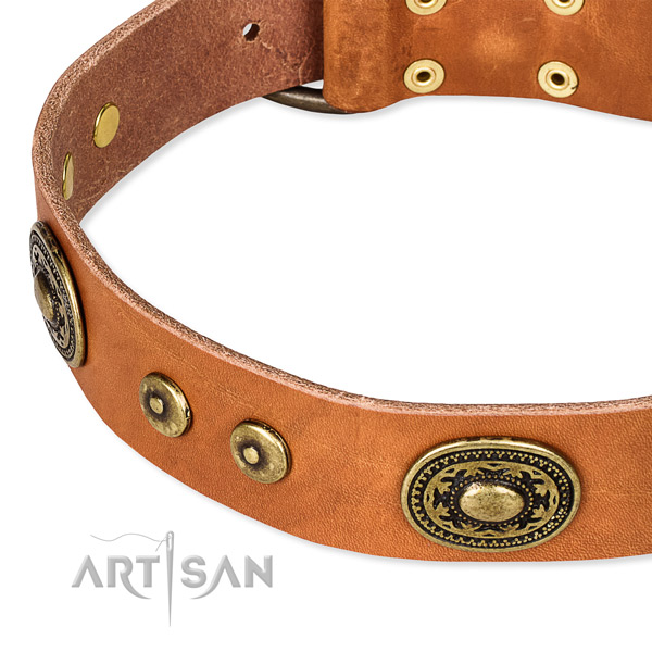 Snugly fitted leather dog collar with resistant brass plated buckle and D-ring