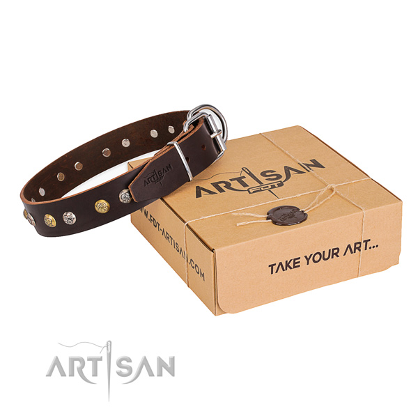 Best quality leather dog collar for stylish walking