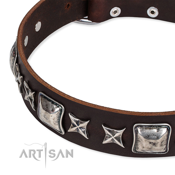 Quick to fasten leather dog collar with almost unbreakable rust-proof set of hardware