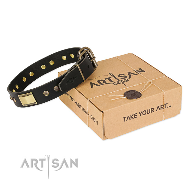 Stylish full grain genuine leather dog collar for everyday walking