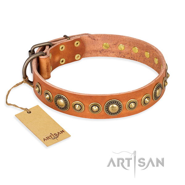 Heavy-duty leather dog collar with strong fittings