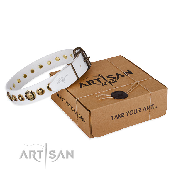 Finest quality full grain leather dog collar for stylish walking
