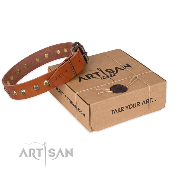 Trendy full grain leather dog collar for walking in style