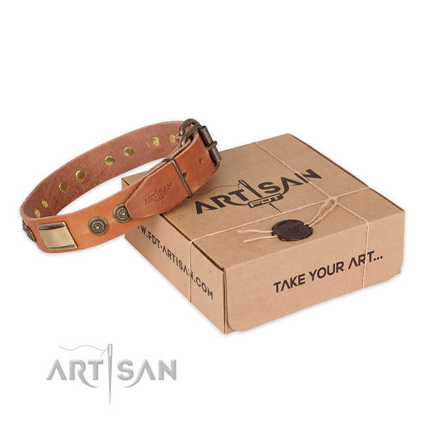 High quality leather dog collar for walking in style