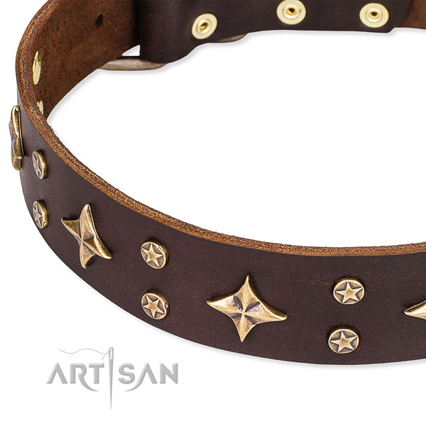 Adjustable leather dog collar with extra strong non-rusting buckle