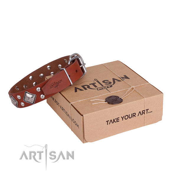 Designer full grain genuine leather dog collar for walking in style
