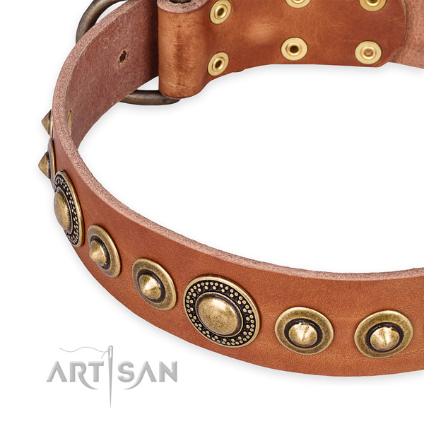 Quick to fasten leather dog collar with almost unbreakable rust-proof buckle