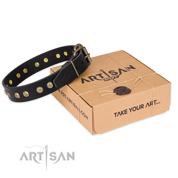 Stylish full grain natural leather dog collar for stylish walks