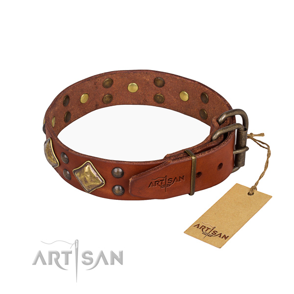 Practical leather collar for your gorgeous four-legged friend