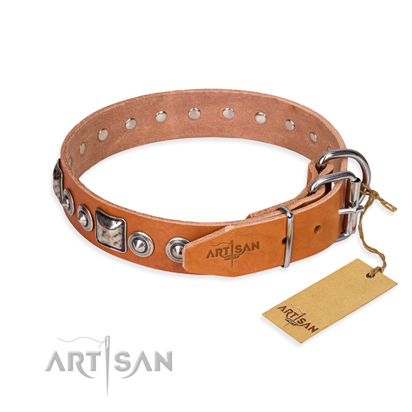 Durable leather collar for your handsome four-legged friend