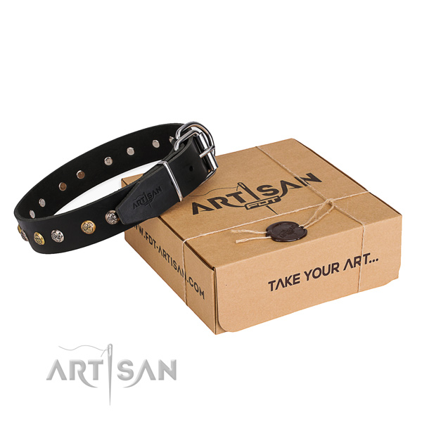 High quality full grain leather dog collar for daily use