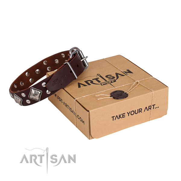 Awesome leather dog collar for daily walking