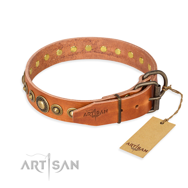 Daily leather collar for your elegant four-legged friend