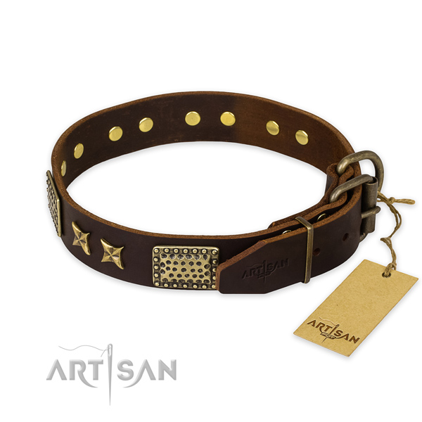 Walking leather collar with adornments for your doggie