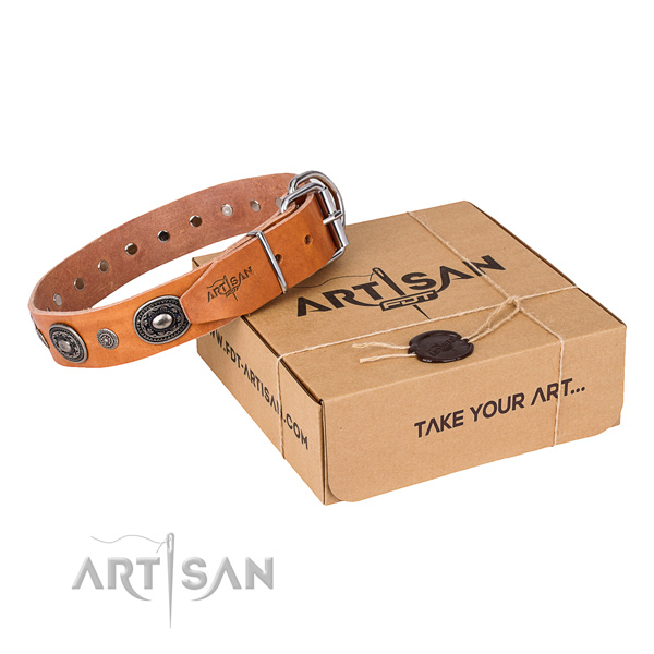 Impressive natural genuine leather dog collar for everyday walking