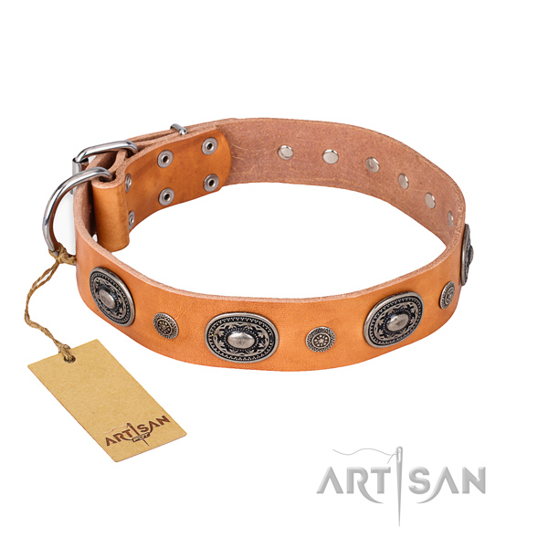 Exceptional design studs on genuine leather dog collar