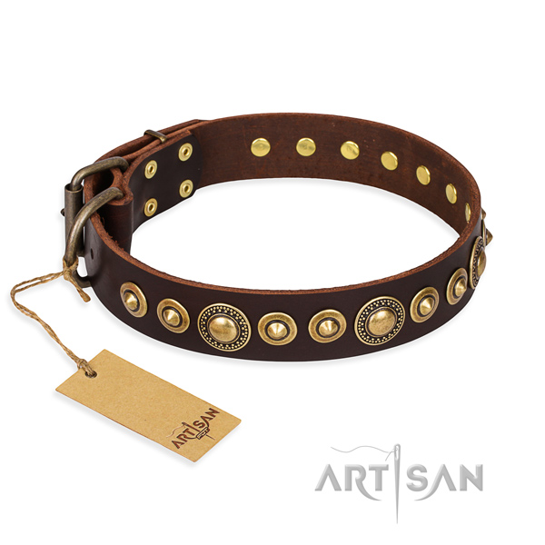 Indestructible leather dog collar with reliable fittings