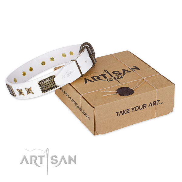 Stylish leather dog collar for stylish walks