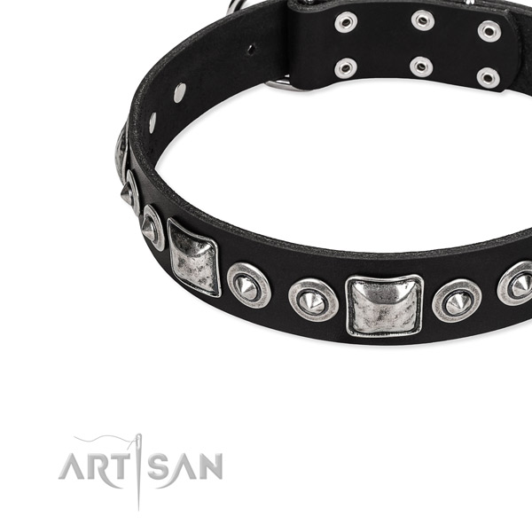 Quick to fasten leather dog collar with almost unbreakable chrome plated hardware