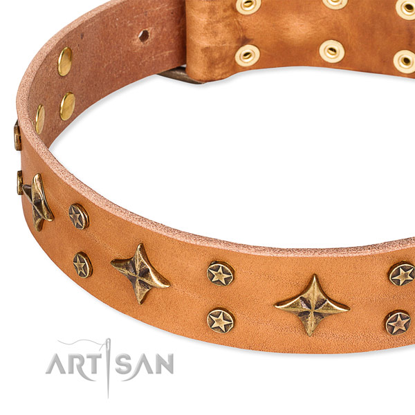 Easy to use leather dog collar with resistant to tear and wear rust-proof hardware