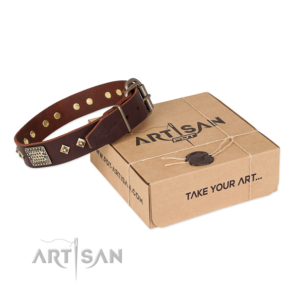 Fashionable full grain natural leather dog collar for walking in style