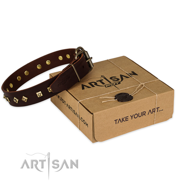 Perfect fit leather dog collar for stylish walking