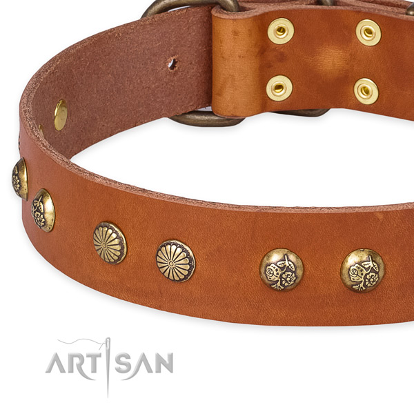 Quick to fasten leather dog collar with extra sturdy rust-proof set of hardware