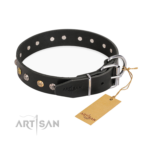 Exceptional design embellishments on leather dog collar