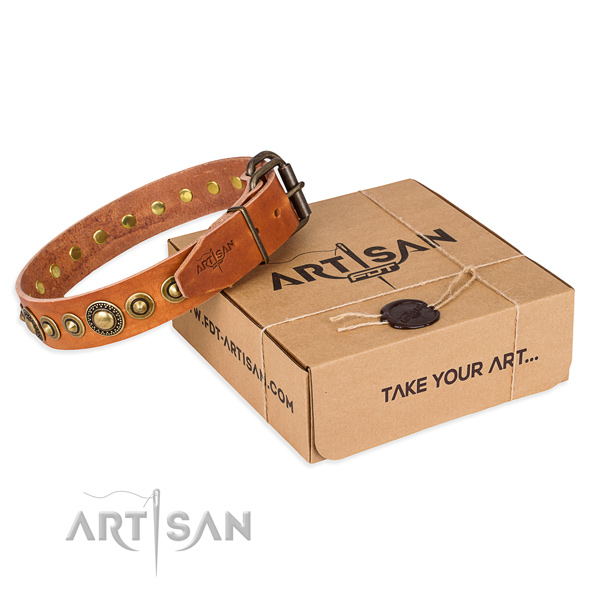 Designer leather dog collar for stylish walking